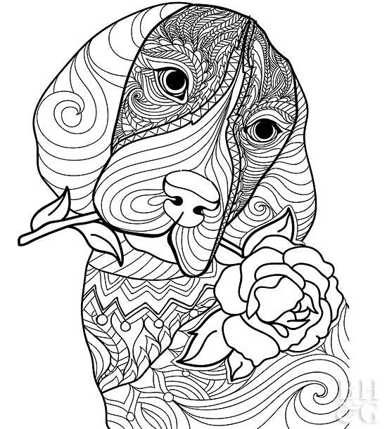 Here Are 24 Free Pet Coloring Pages To Help You Relax Dog Coloring Page Puppy Coloring Pages Cat Coloring Page