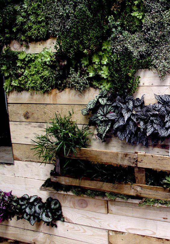 Estanterías con arreglos de plantas hechas con palets de madera. Propuesta de Espacio Fronda para Casa Decor Madrid 2012