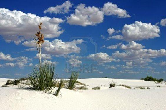 Nuevo Mexico  Desierto de Arenas Blancas