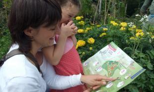 Activiteitenoverzicht bezoekerscentrum Veluwezoom - Rheden - Natuurmonumenten
