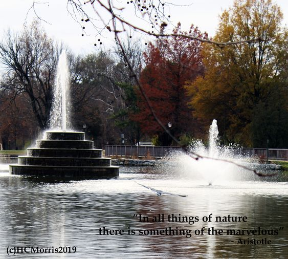 image of two fountains on a lake with Aristotle quote