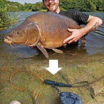 Sicher ist Sicher! | Karpfen angeln, Karpfenfischen, Angeltricks
