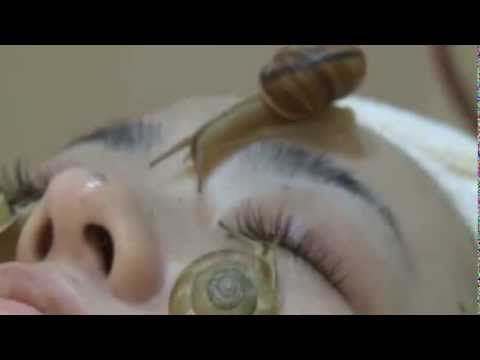 Japonesas colocam caracois no rosto para tratamento estético