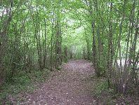 Six parcs pour se promener à Melun - Evous