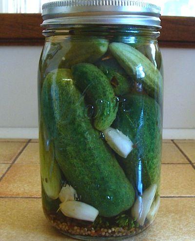 Garlic dill pickles, Refrigerators and Refrigerator ...