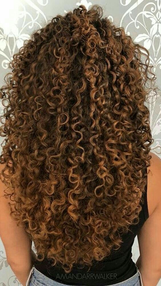 Pin By Lee Martinez On Cabelo Cacheado Curly Hair Styles Curly Hair Inspiration Curly Hair Styles Naturally