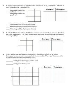 Printables Monohybrid Cross Worksheet genetics and worksheets on pinterest problems worksheet incomplete dominance nondominance