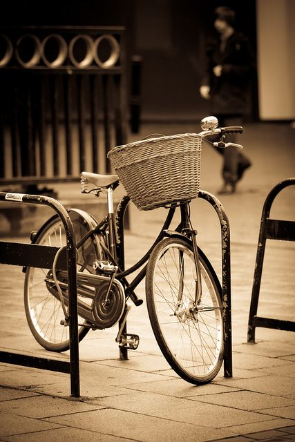 When I see an adult on a bicycle, I do not despair for the future of the human race. H.G. Wells