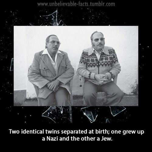 Hitler Quotes On Youth: 17 Best Images About Interesting Facts Cool