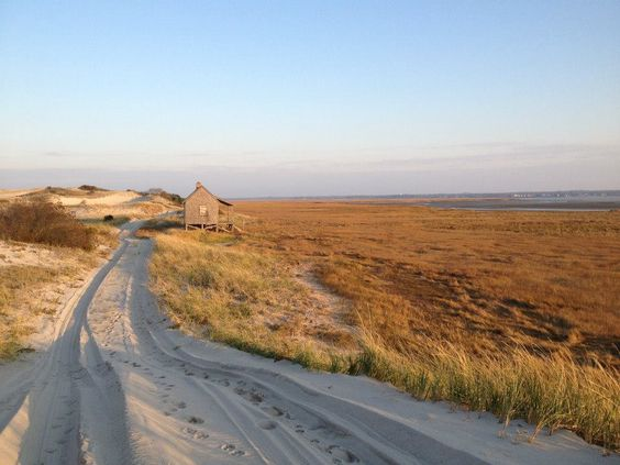 Featured Beach: Sandy Neck, Cape Cod ~ Sandwich, MA | The Dune ...