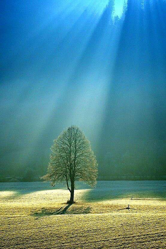 La Beaute Est Partout Dans La Nature 32 Photos Photographie De Paysages Paysage Paysage Magnifique Dessin