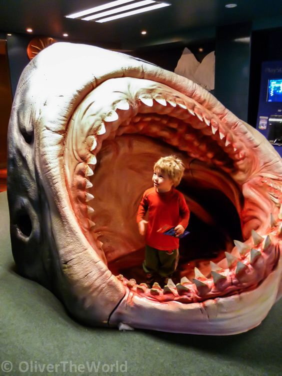 Giant-Shark-Mouth-768x1024.jpg (768×1024)