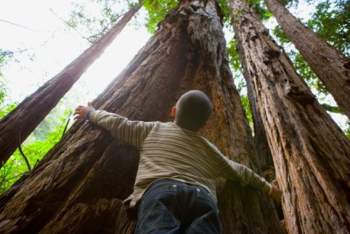20 places every California kid should see