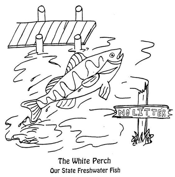 Freshwater Fish Coloring Pages Perfect Coloring Freshwater Fish