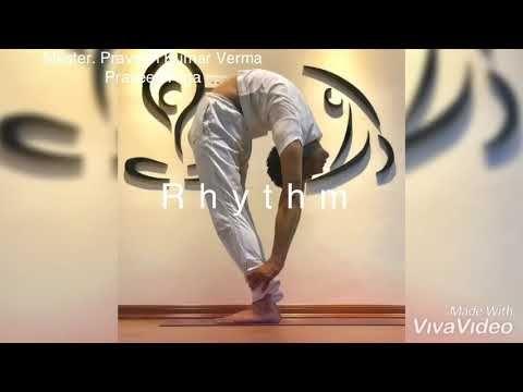 Advance Yoga Dynamic Yoga Pose Praveenyoga Master Praveen Youtube Yoga Calisma
