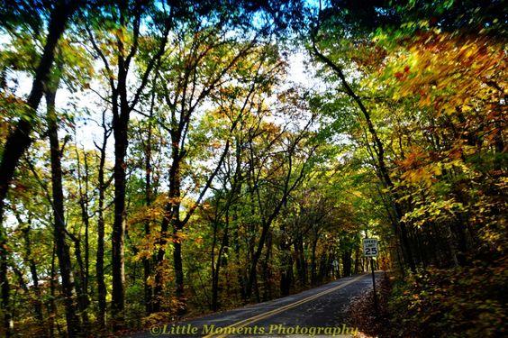 Fall, Colors, Digital Download, Photo, Photography, Arkansas, Roads, Devil's Den, by LittleMomentsPhotos on Etsy