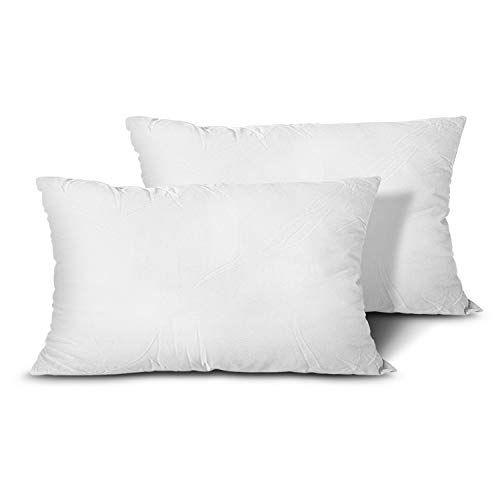 EDOW Throw Pillow Inserts, Set of 2