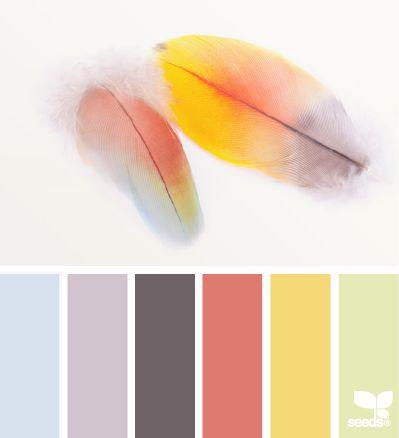 Nuancier & Palette de couleurs - Cahier de styles - Atelier de Paysage - JesuisauJardin.fr - Paris