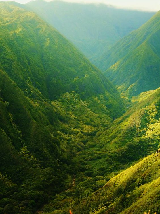 The beautiful mountain side of Maui, Hawaii <3