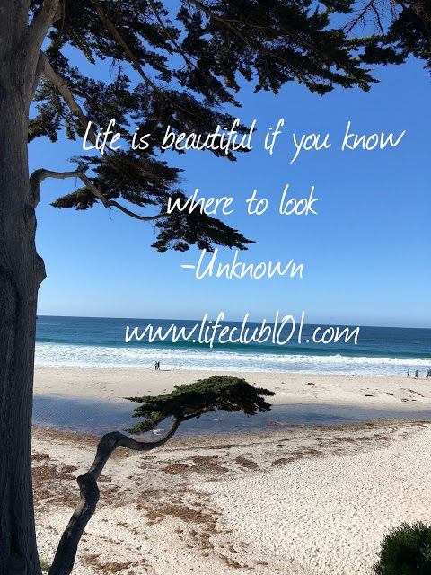 Life Is Beautiful If You Know Where To Look Life Is Beautiful