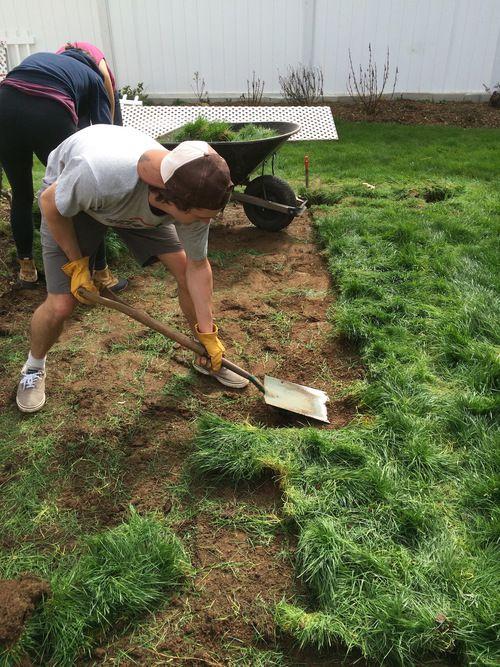 Preparing Your Soil For Planting Vegetables Planting Vegetables Garden Help Edible Landscaping