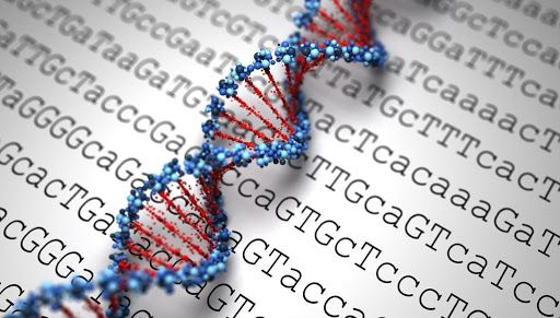 Florida Set To Be First State To Shield Residents Genetic