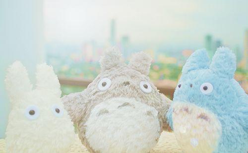 ❤ Blippo.com Kawaii Shop ❤ Totoro and friends!