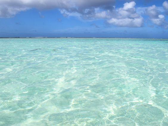 グアムの緑の海