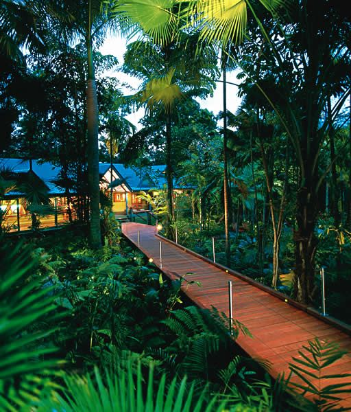Silky Oaks Lodge, amazing hotel with treehouses as rooms in the middle of the Australian rainforest.