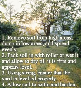 Leveling An Existing Yard   Hereu0027s How To Level A Yard Easily | Yards, New  Houses And The Front