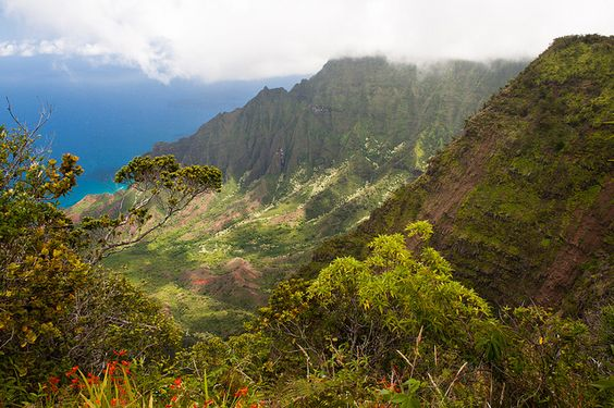 Na Pali, Hawaii #travel #places