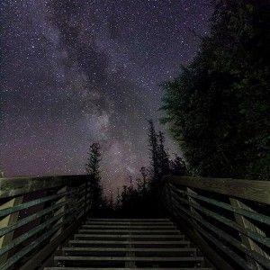 A beautiful fan photo of a breathtaking starry night in Michigan #stars