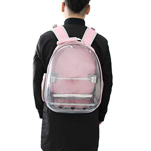 Pet Carrier Space Capsule Backpack Front Clear Travel Perch Best Offer Petsep Com Pet Carriers Pets Best Pet Birds
