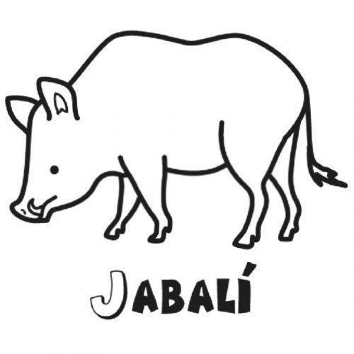 Https Www Guiainfantil Com Dibujo Infantil De Jabali En El Bosque Dibujos Infantiles Jabali Simbolos Patrios