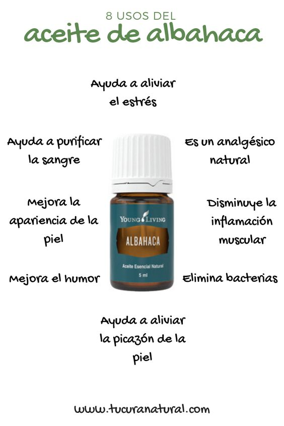 usos del aceite de albahaca