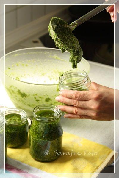 Barafras Kochlöffel: Der Rucola wuchert oder: püriert und ab ins Glas als Pesto ;-))) ...