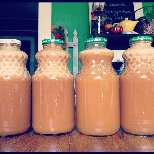 Homemade Apple Juice  (Note from comments: Instead of composting all of our apple and carrot pulp we froze it in 1 to 2 cup batches to use in quick breads such as carrot bread or apple spice cake.)