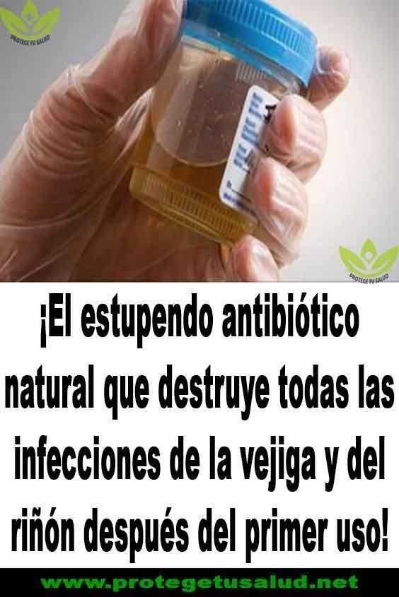 El Estupendo Antibiótico Natural Que Destruye Todas Las Infecciones De La Vejiga Y Del Riñón Después Antibióticos Naturales Salud De Los Riñones Antibioticos