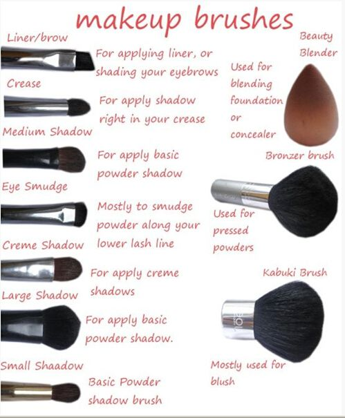 Want Know Name Each Makeup Brush