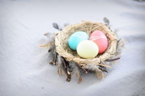 Beautiful eggs part 2