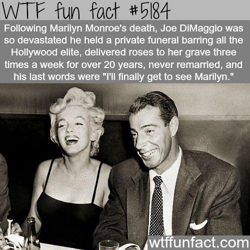 Joe DiMaggio and Marilyn Monroe - WTF fun facts
