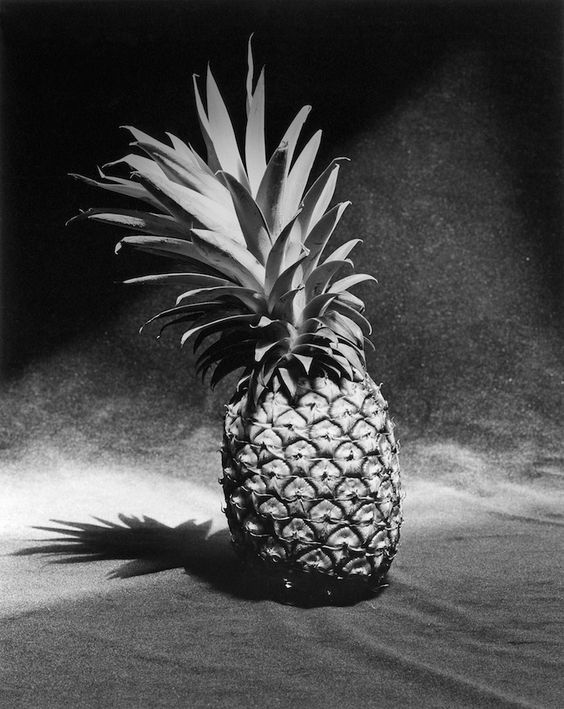 Ananas by Robert Mapplethorpe