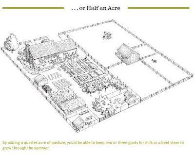 Half an acre homestead layout rodriguez farm pinterest for Half acre backyard landscaping ideas