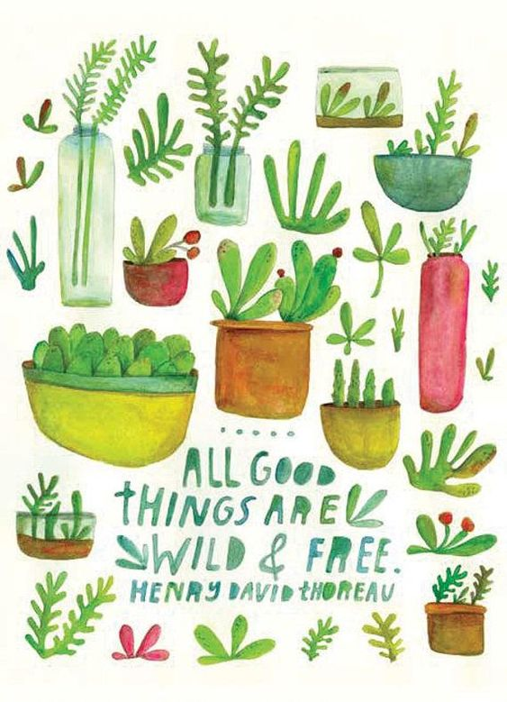 Inspiring quote by Henry David Thoreau. All Good Things Are Wild & Free. Art work by Lisa Congdon. #inspiringquote #thoreau #lisacongdon