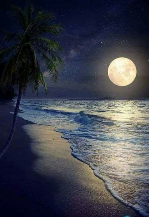 Pin By Lauren Lail On Paisagens Nature Photography Beautiful Moon Moon Photography