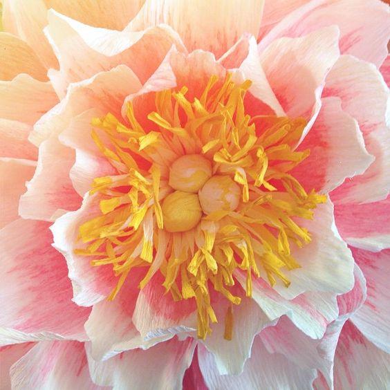 Sunny peony. #papertopetal #paperflowers