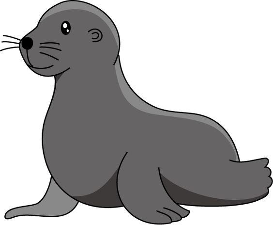 Sea Lion Clipart Clipart Kid Lion Cartoon Drawing Sea Lion Cartoon Animals