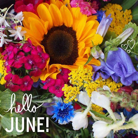 Hello June!: