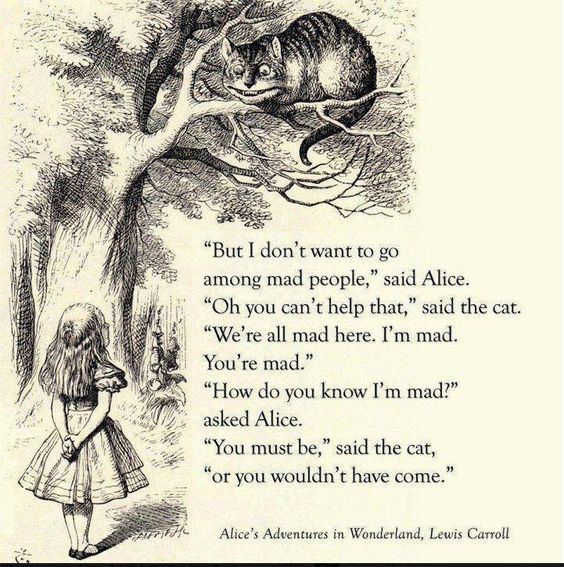 Alice Perrin Google Search: Alice In Wonderland Quotes Lewis Carroll