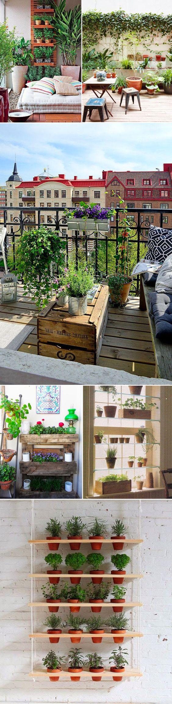 jardins_005
